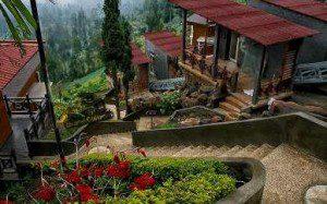 Bromo Cottage Hotel Tosari Pasuruan