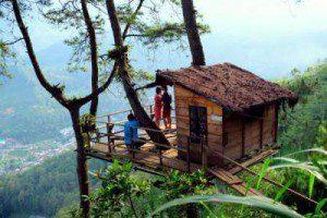Rumah Pohon - Omah Kayu Paralang Batu Malang