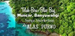 Teluk Biru Muncar Banyuwangi